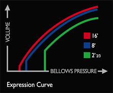 Expression Curve